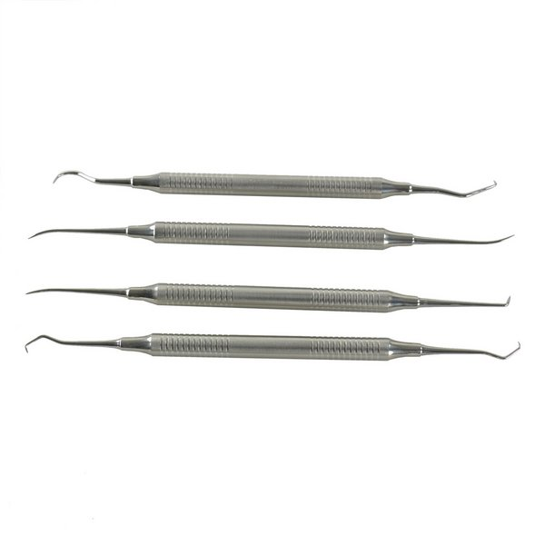 Probe and Pick Set / Pro / Dental Style