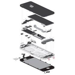iPhone 4/4S Bottom Screws